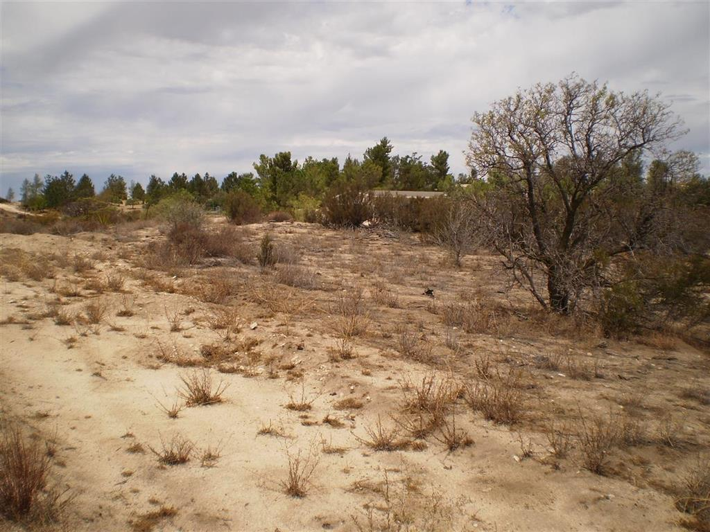 Land / Lots for Sale at Angel Boulevard, California 91905 United States